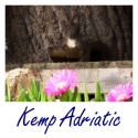 Kemp Adriatic